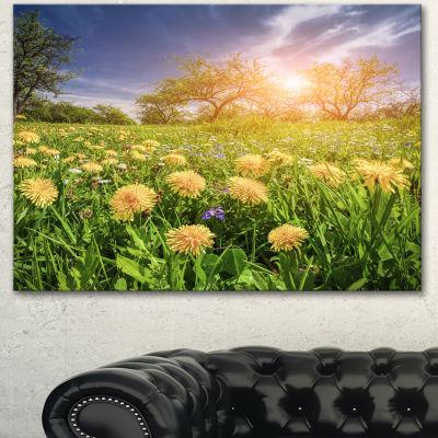 Designart Blossom Dandelions In Green Garden LargeLandscape Canvas Art Print