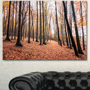 Design Art Bright Fall Forest With Clear Sky Modern Forest Canvas Art