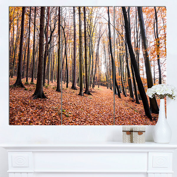 Design Art Bright Fall Forest With Clear Sky ModernForest Canvas Art 3 Panels