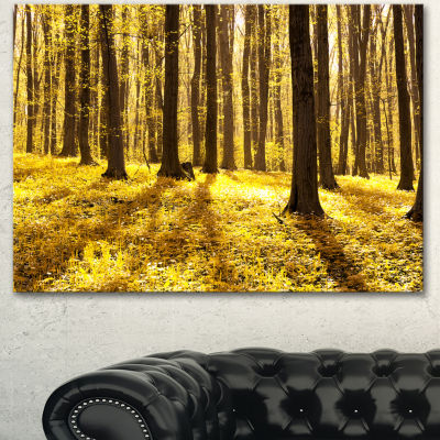 Designart Bright Green Forest At Sunset Modern Forest Canvas Art 3 Panels
