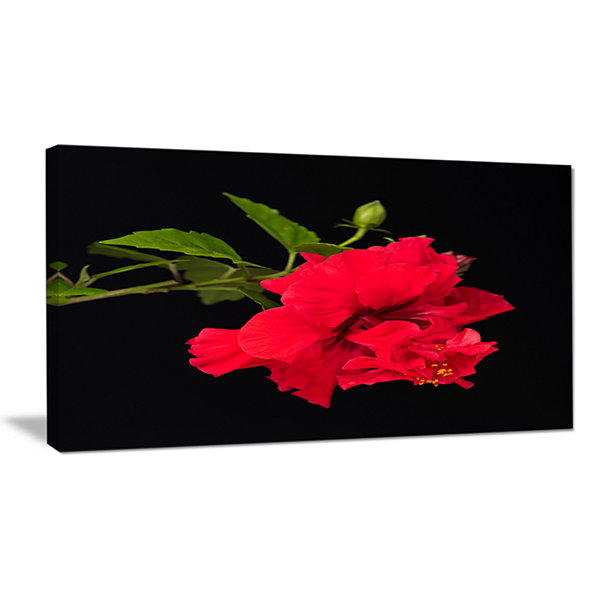 Design Art Bright Red Hibiscus On Black Large Floral Canvas Art Print