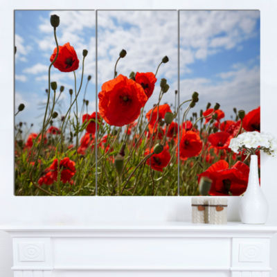 Designart Bright Red Poppy Flowers Photo Flower Artwork On Canvas  3 Panels