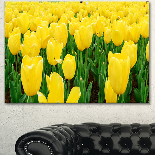 Design Art Bright Tulip Flowers In Garden Floral Canvas Art Print