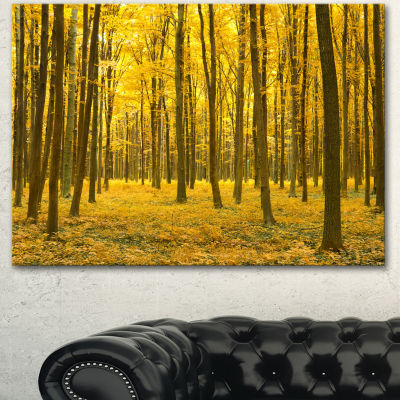 Designart Bright Yellow Autumns Forest Modern Forest Canvas Art
