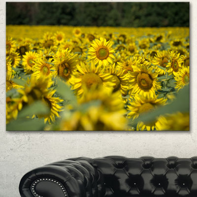 Design Art Bright Yellow Sunflowers Field Floral Canvas Art Print