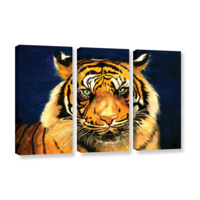 Brushstone Tiger By Lins 3-pc. Gallery Wrapped Canvas Wall Art