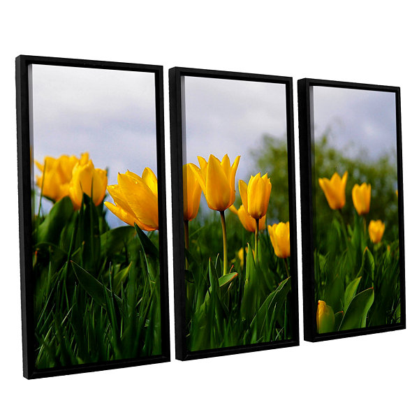 Brushstone Tulips by Lindsey Janich 3-pc. Floater Framed Canvas Wall Art