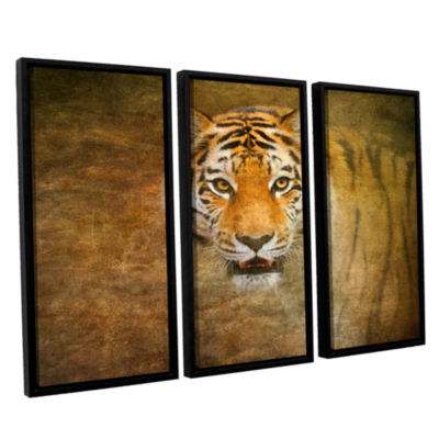 Brushstone Tiger by Antonio Raggio 3-pc. Floater Framed Canvas Wall Art