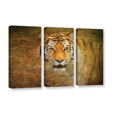 Brushstone Tiger by Antonio Raggio 3-pc. Gallery Wrapped Canvas Wall Art