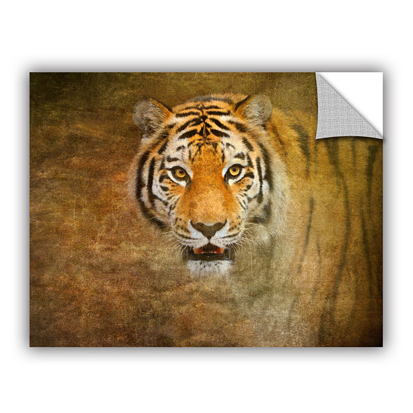 Brushstone Tiger by Antonio Raggio Removable WallDecal