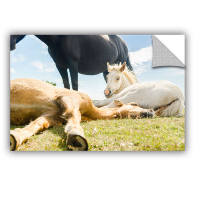 Brushstone Three Horses Ways Removable Wall Decal