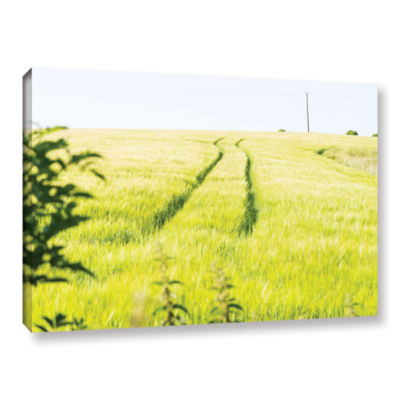 Brushstone Tracks In Grass Gallery Wrapped CanvasWall Art