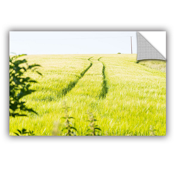Brushstone Tracks In Grass Removable Wall Decal