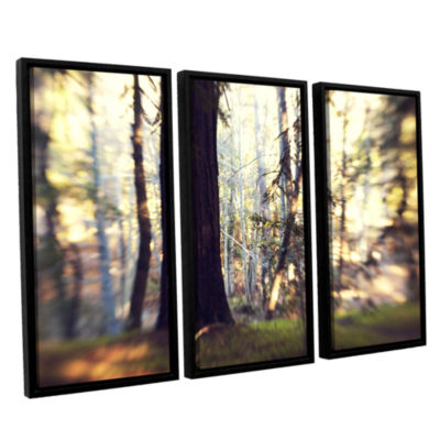 Brushstone Titan Of The Forest 3-pc. Floater Framed Canvas Wall Art