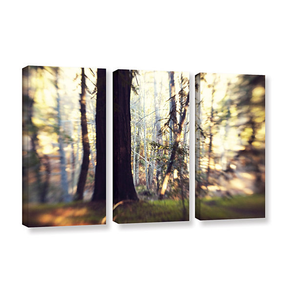Brushstone Titan Of The Forest 3-pc. Gallery Wrapped Canvas Wall Art