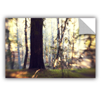 Brushstone Titan Of The Forest Removable Wall Decal