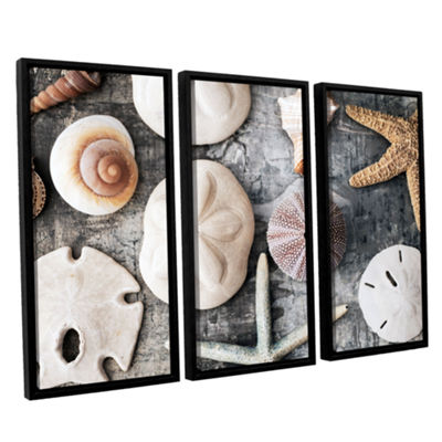 Brushstone Treasures From The Sea 3-pc. Floater Framed Canvas Wall Art
