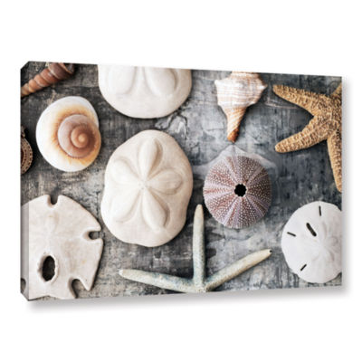 Brushstone Treasures From The Sea Gallery WrappedCanvas Wall Art