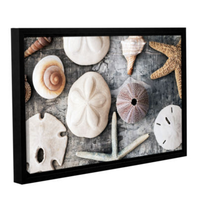 Brushstone Treasures From The Sea Gallery WrappedFloater-Framed Canvas Wall Art