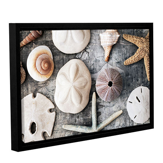 Brushstone Treasures From The Sea Gallery Wrapped Floater-Framed Canvas Wall Art