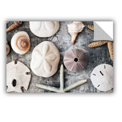 Brushstone Treasures From The Sea Removable Wall Decal