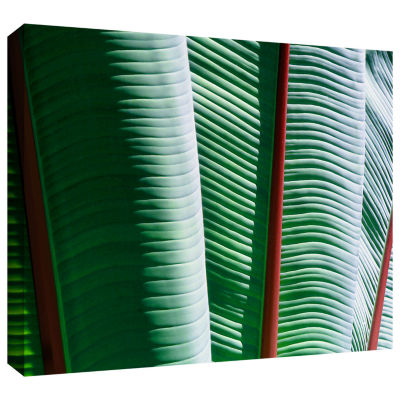 Brushstone Tropicality Gallery Wrapped Canvas WallArt
