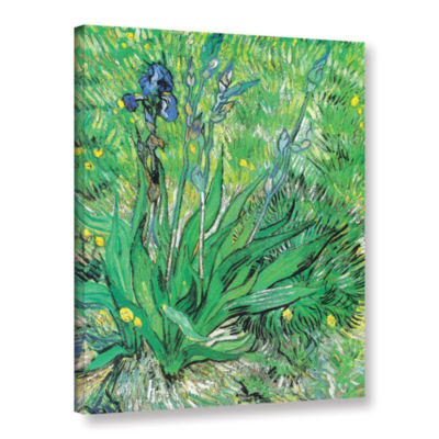 Brushstone The Iris Gallery Wrapped Canvas Wall Art