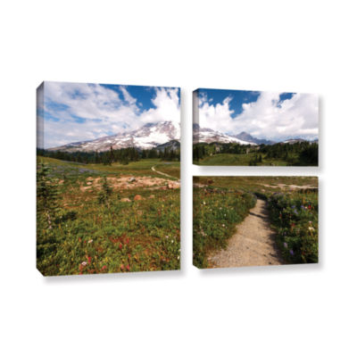 Brushstone The Path To Mt Rainier 3-pc. Flag Gallery Wrapped Canvas Wall Art