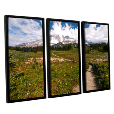 Brushstone The Path To Mt Rainier 3-pc. Floater Framed Canvas Wall Art
