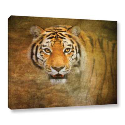 Brushstone Watching Tiger Gallery Wrapped Canvas Wall Art