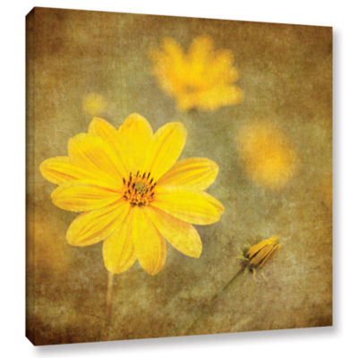 Brushstone Vivid Daisey Gallery Wrapped Canvas