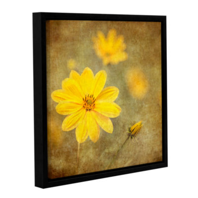 Brushstone Vivid Daisey Gallery Wrapped Floater-Framed Canvas Wall Art