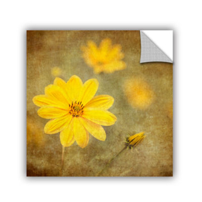 Brushstone Vivid Daisey Removable Wall Decal