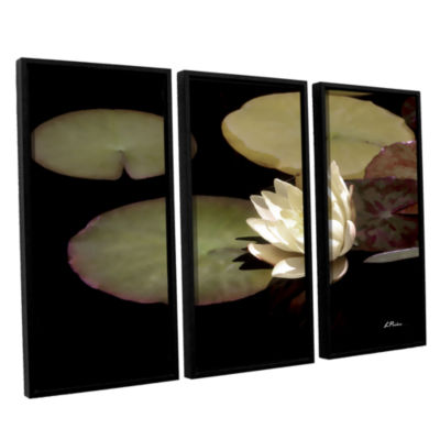 Brushstone Water Lily I 3-pc. Floater Framed Canvas Set