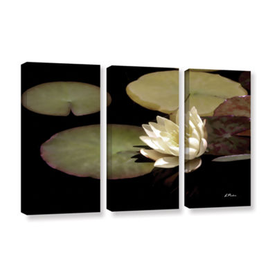 Brushstone Water Lily I 3-pc. Gallery Wrapped Canvas Set