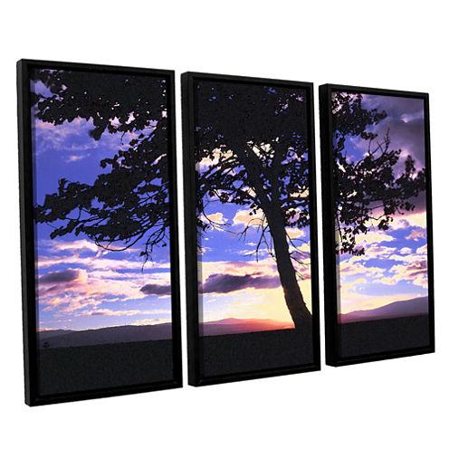 Brushstone Teton Meadow Sunrise 3-pc. Floater Framed Canvas Wall Art