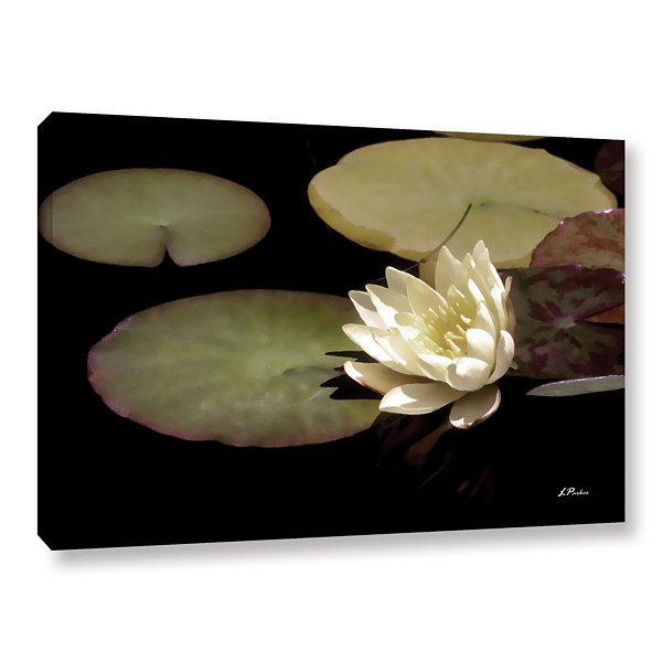Brushstone Water Lily I Gallery Wrapped Canvas Wall Art