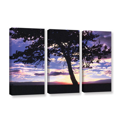 Brushstone Teton Meadow Sunrise 3-pc. Gallery Wrapped Canvas Wall Art