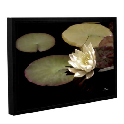 Brushstone Water Lily I Gallery Wrapped Floater-Framed Canvas Wall Art