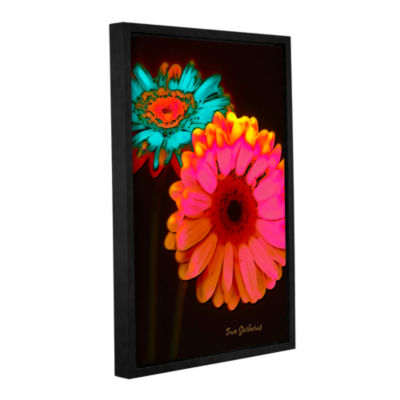 Brushstone Two Gerberas at Night Gallery Wrapped Floater-Framed Canvas
