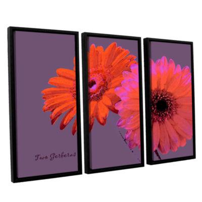 Brushstone Two Gerberas 3-pc. Floater Framed Canvas Set
