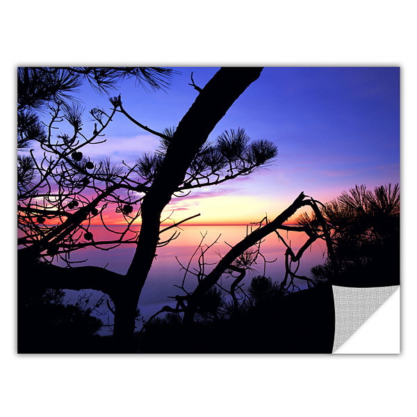 Brushstone Sunset Forest Removable Wall Decal