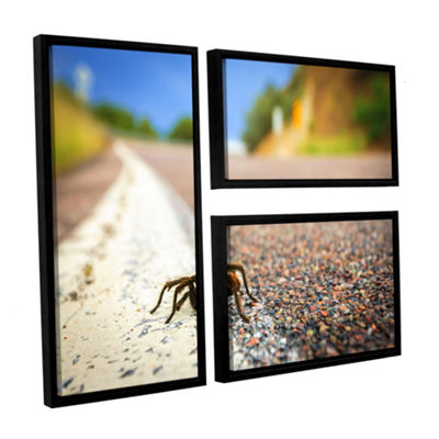 Brushstone Tarantula 3-pc. Flag Floater Framed Canvas Wall Art