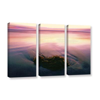 Brushstone Twilight Kelp 3-pc. Gallery Wrapped Canvas Set