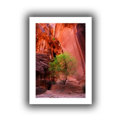Brushstone Utah-Green Tree Red Canyon Canvas WallArt