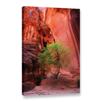 Brushstone Utah-Green Tree Red Canyon Gallery Wrapped Canvas Wall Art