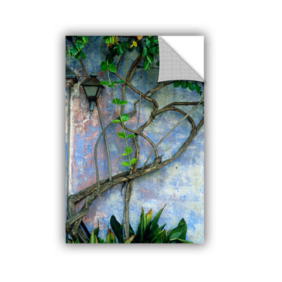 Brushstone Vine and Wall Removable Wall Decal