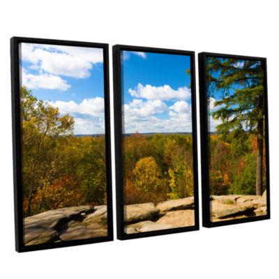Brushstone Virginia Kendall 3-pc. Floater Framed Canvas Set