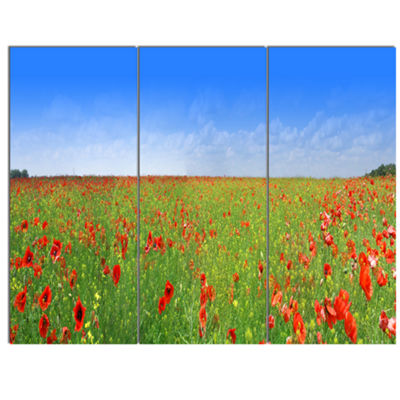 Designart Poppy Meadow Panorama Landscape CanvasArt Print - 3 Panels
