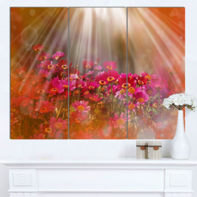 Designart Sunlight Over Small Red Flowers Large Floral Canvas Artwork - 3 Panels